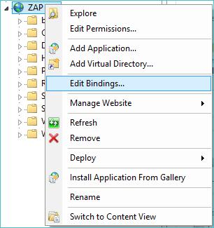 Customizing the ZAP BI Application Web Site Bindings in IIS